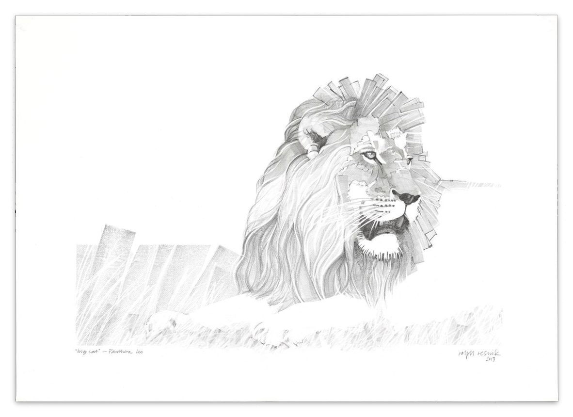"""""""Big Cat"""" – SOLD Pencil painting on acid-free paper; 1010 mm x 720 mm"""