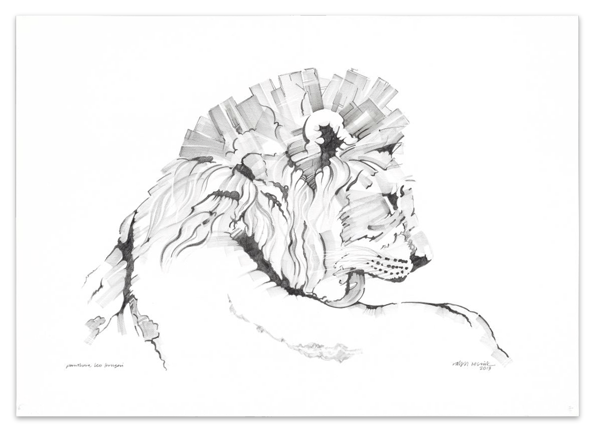 Lion Licking – FOR SALE Pencil painting on paper; with color on frame 700 mm x 500 mm