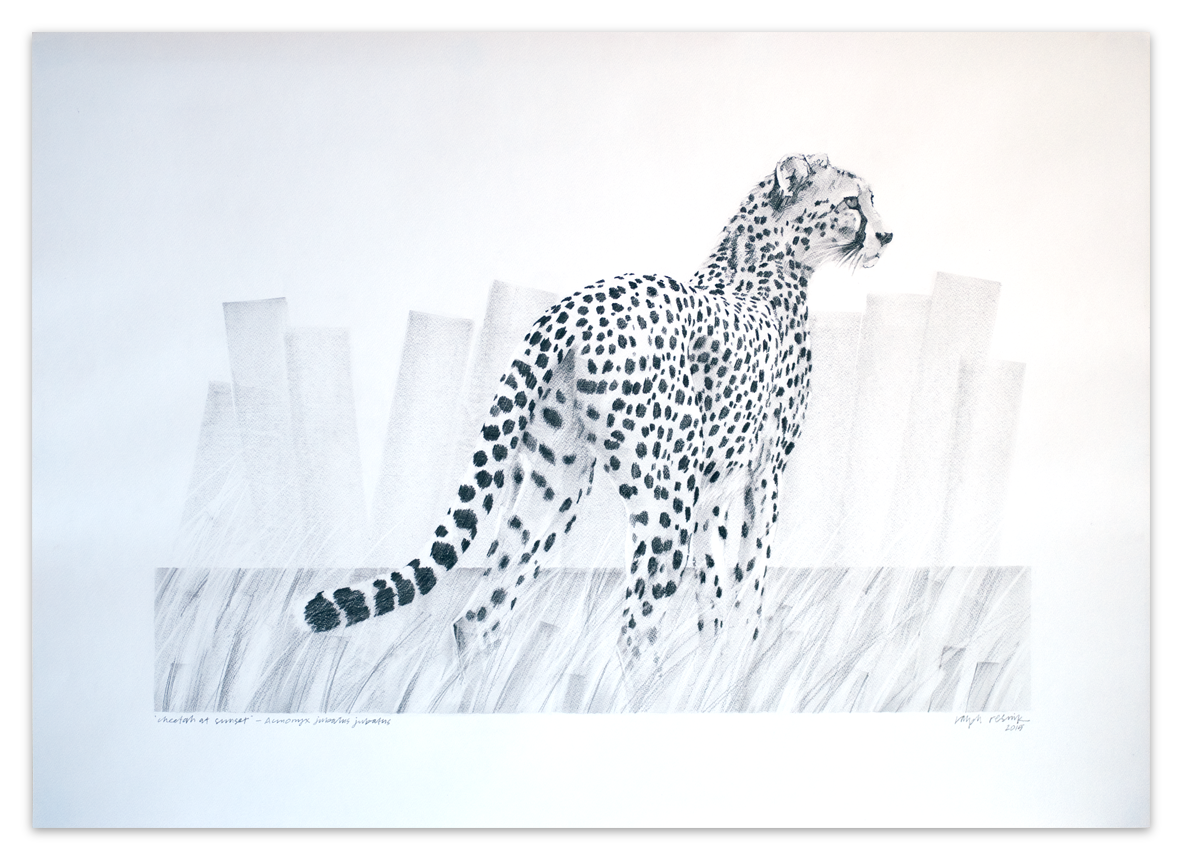 """Cheetah at sunset"" – FOR SALE Pencil and acrylic painting on acid-free paper; 1000 mm x 700 mm by Ralph Resnik Wildlife Artist"