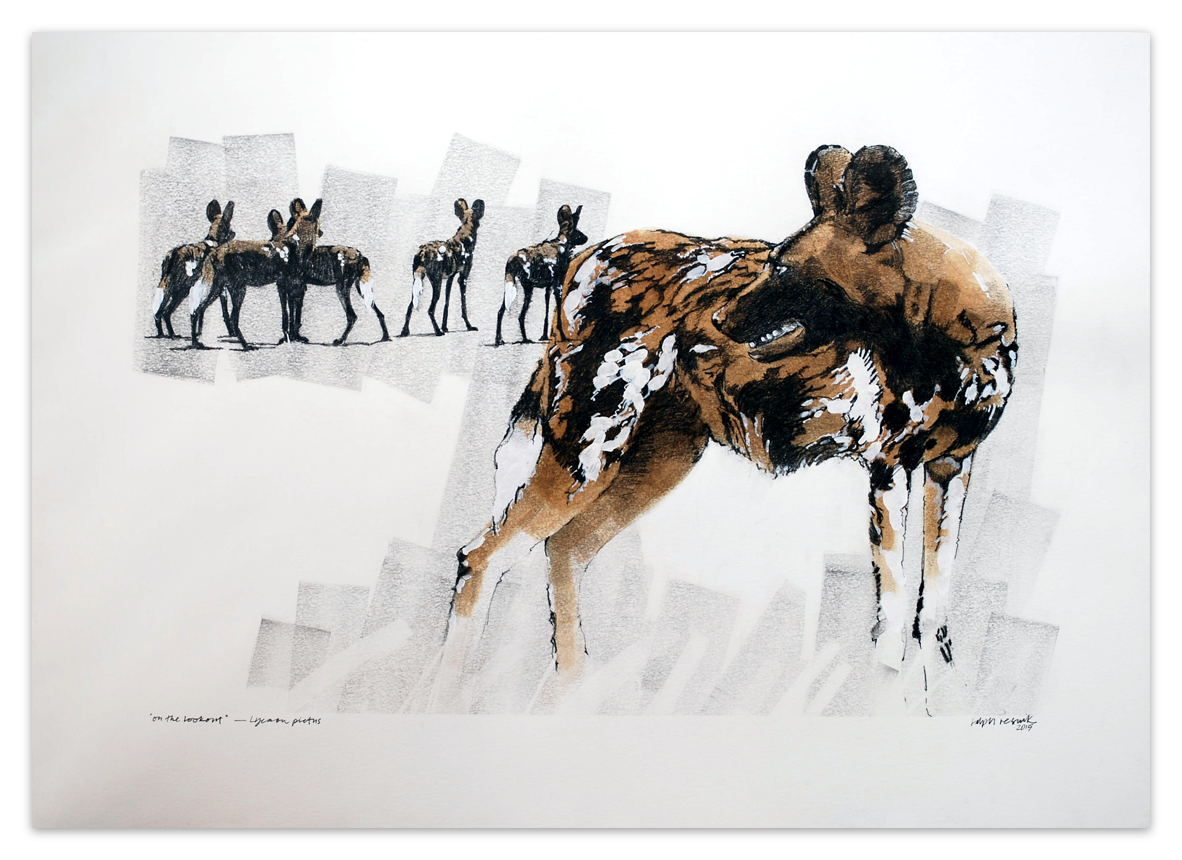 """Wild Dog - On the lookout"" – FOR SALE Pencil, acrylic and tea painting on acid-free paper; 1000 mm x 700 mm by Ralph Resnik Wildlife Artist"